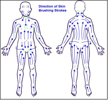 gua sha massage cellulite