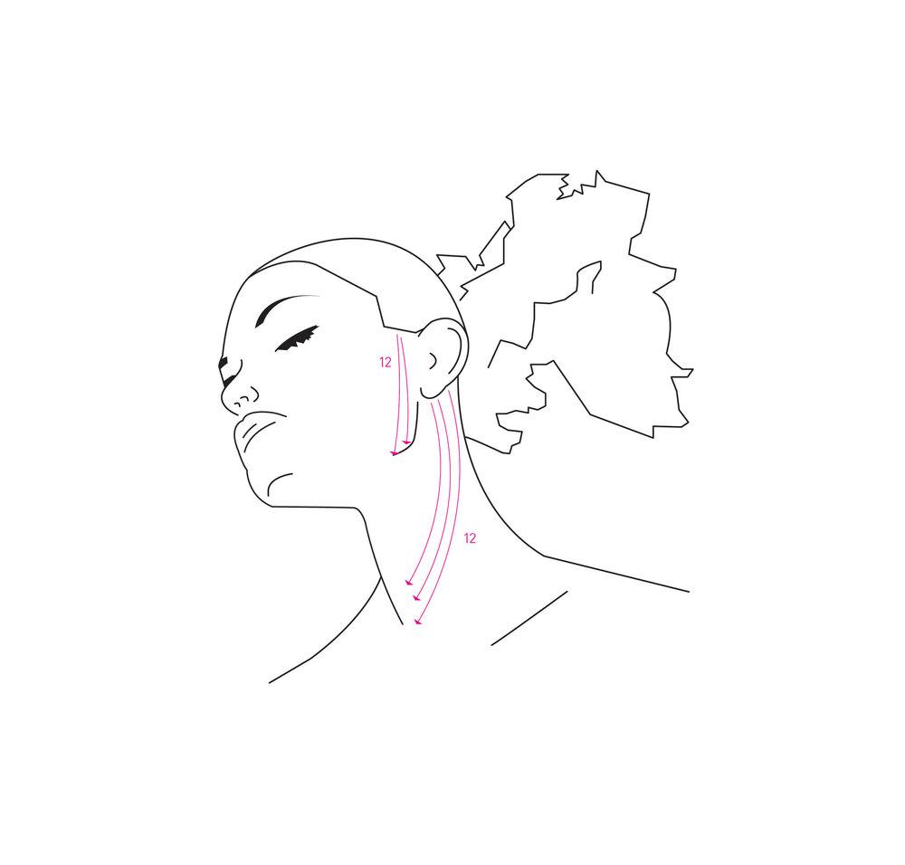 BRUSH+illustrationer-01.jpg