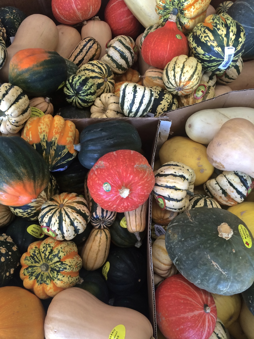Gourds galore at a market in Eugene.