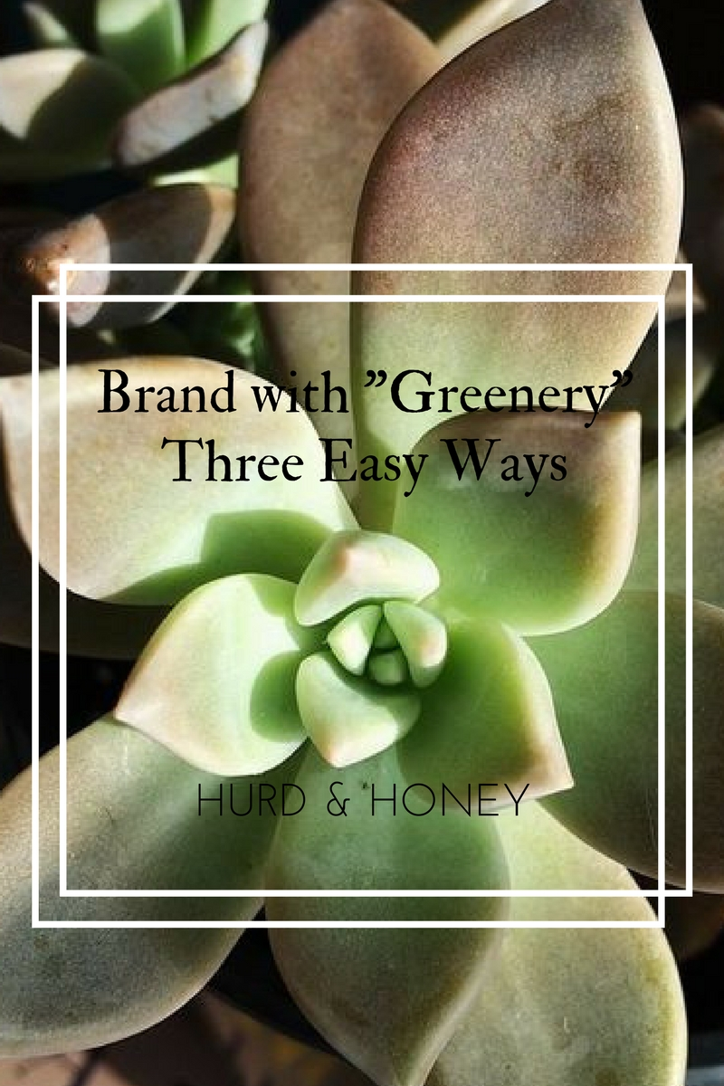 "Use ""Greenery"" in your Small Business Branding"