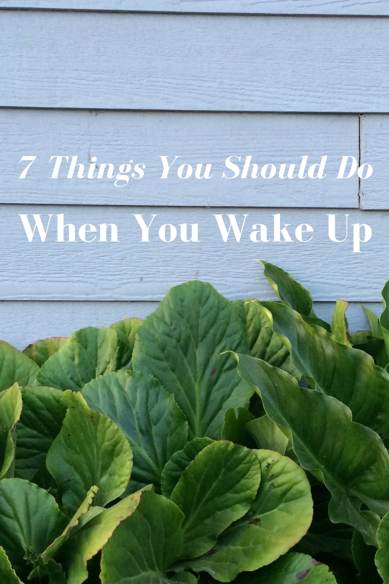7 Things You Should Do When You Wake Up — H u r d & H o n e y
