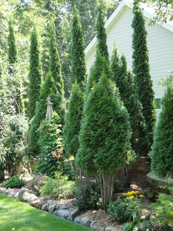 Best of Landscaping