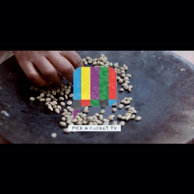 "Have you seen our new video yet? It shows what a traditional Ethiopian coffee ceremony consist of! It's all a part of the 3 part video series about ""Bloom Addis"", the new face of The Koshe Project. This video is to introduce to you another part of the Ethiopian culture. Our last and third video will be released soon and will educate you on specifically what Bloom Addis is. Watch here : http://vimeo.com/95796576. #ethiopia #coffee #ceremony #tradition #pickapockettv #addisababa #buna #pickapocketmedia #coffeeceremony"