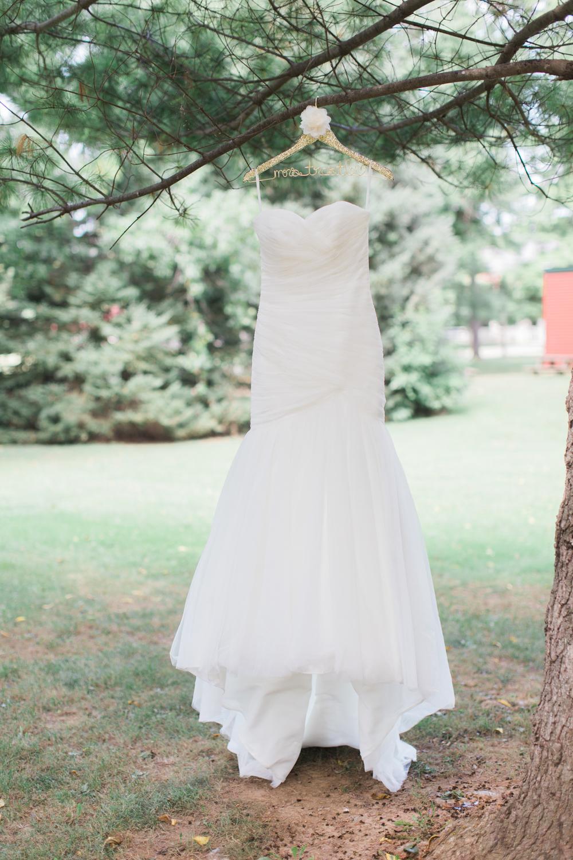 landis-valley-pennsylvania-wedding-02