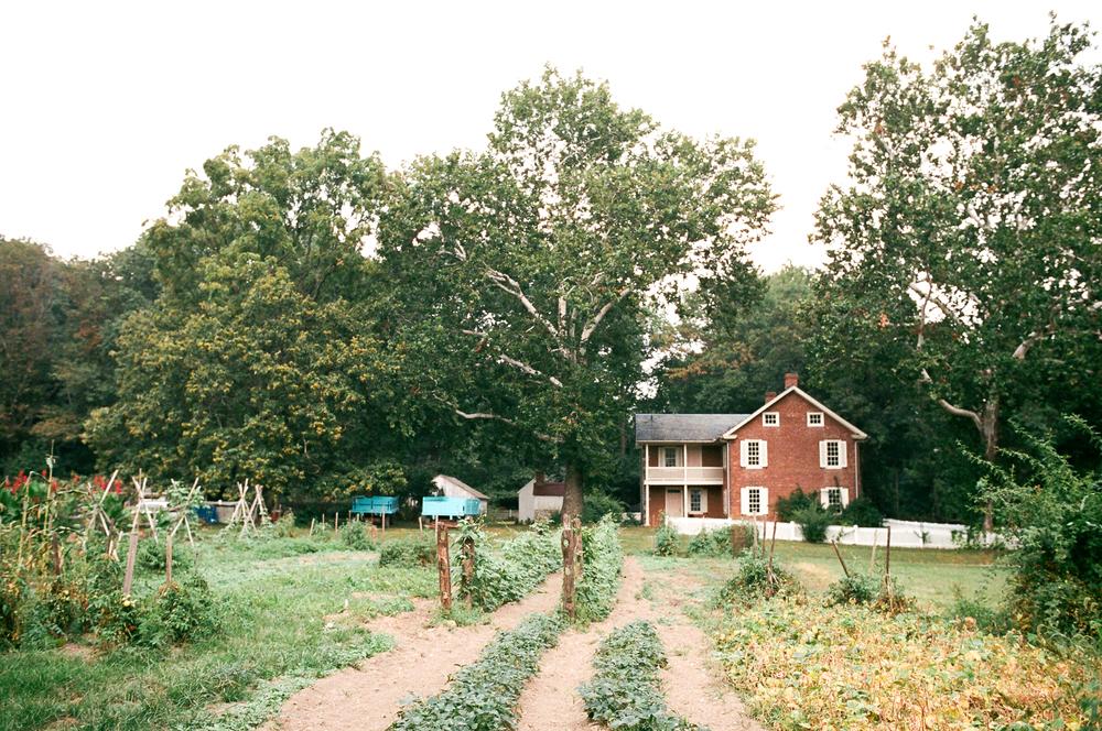 landis-valley-pennsylvania-wedding-37
