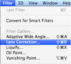 Photoshop-filter-lens-correction-vignette.png