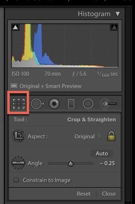 Crop-Tool-Panel.jpg