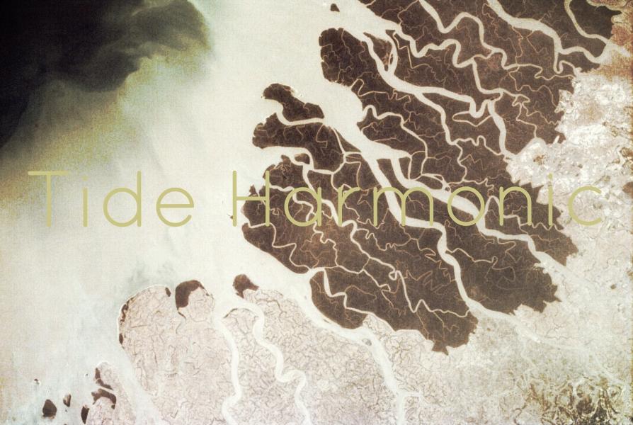 Tide Harmonic