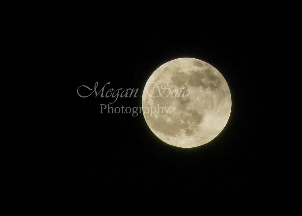 moon2WM.jpg