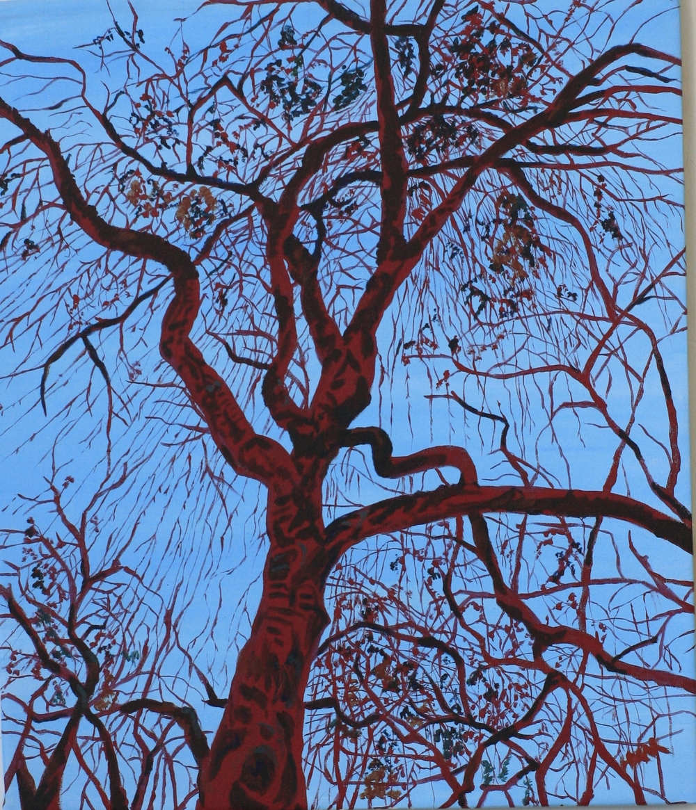 The Red Tree - Acrylic on Canvass.  2.5'x3'