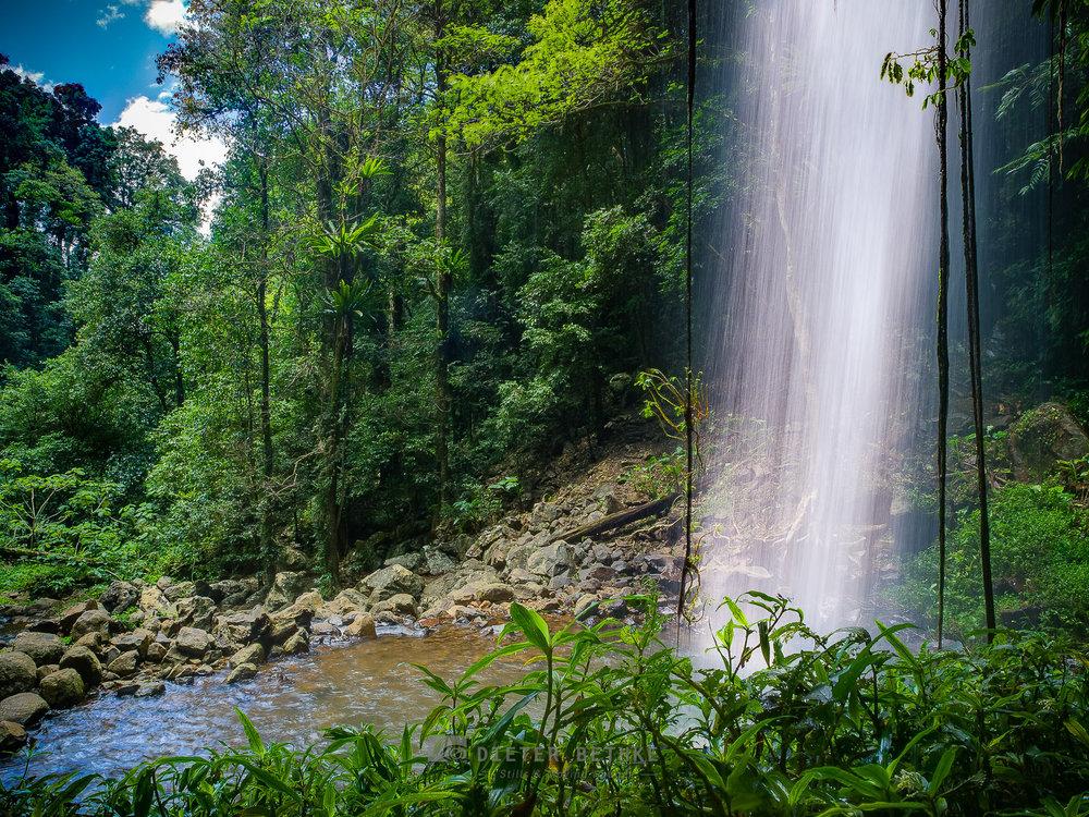 Behind Crystal Shower Falls