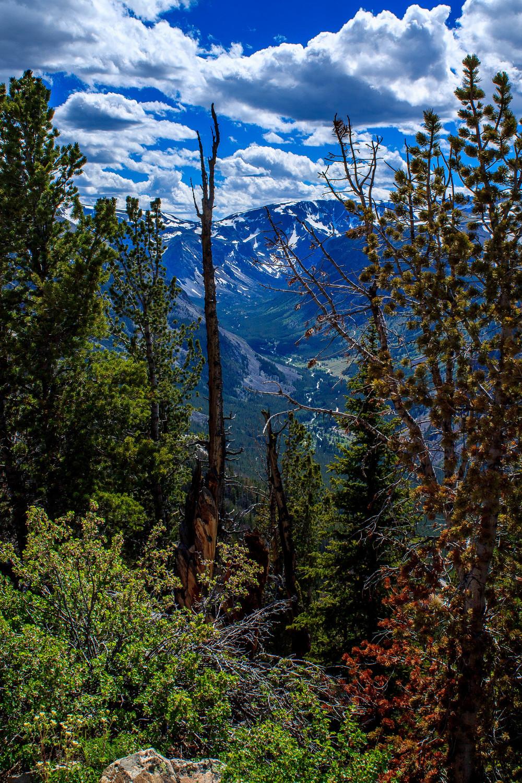 montana_July 06, 2014-16.jpg
