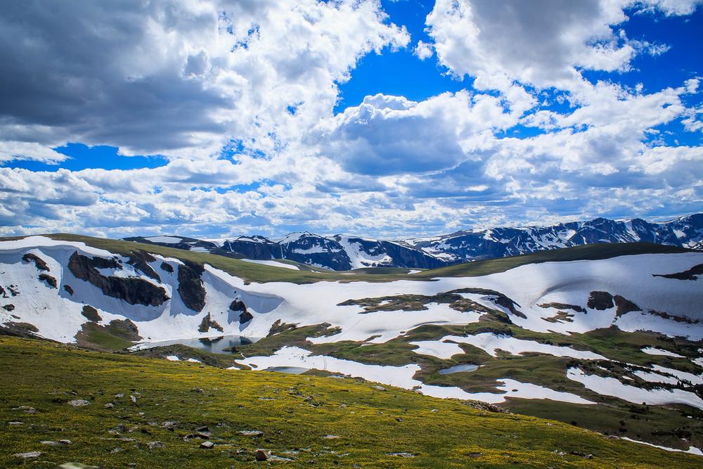 montana_July 06, 2014-40.jpg
