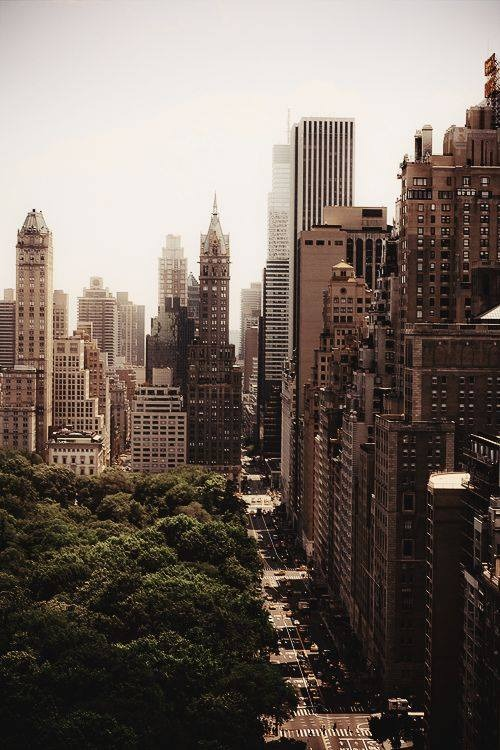 creativetravelspot :     ∴ New York     Concrete jungle where dreams are made of.