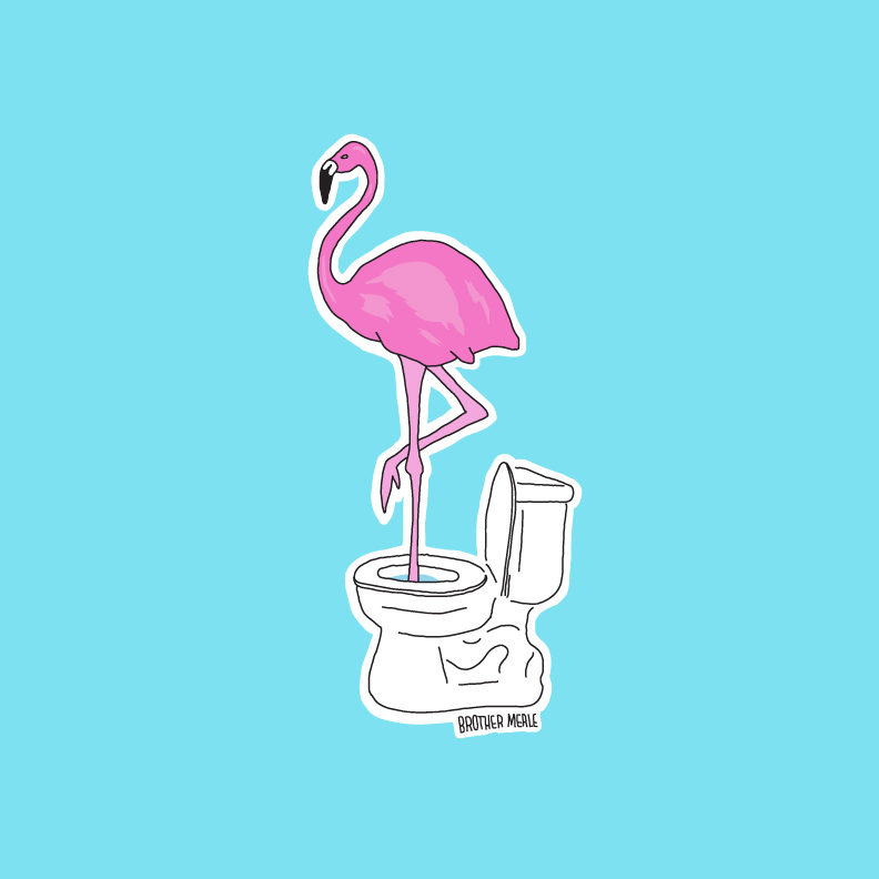 BrotherMerle-Flamingo2.jpg