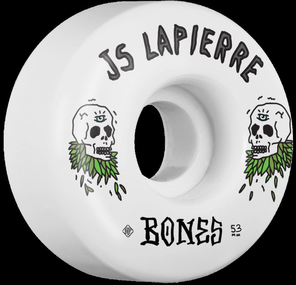 BrotherMerle-BonesWheels-JS-Lapierre