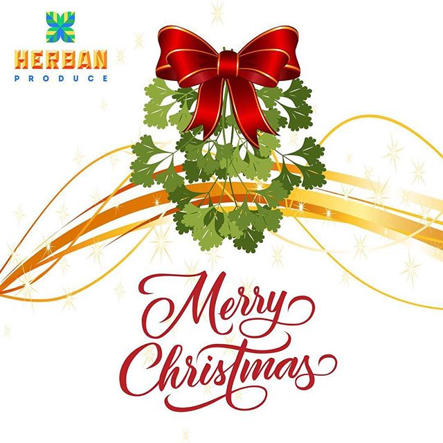 Merry Christmas from all of us at Herban Produce 🎄#merrychristmas #happyholidays #mistletoe #parsley #greenhouse #herbanproduce #hydroponics