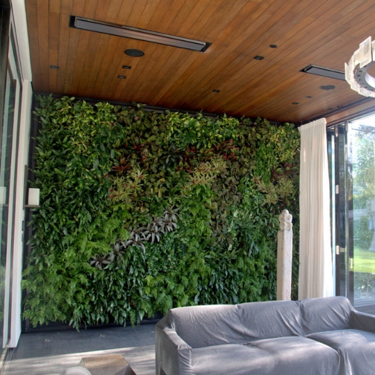 Chris Bribach, Plants On Walls, Beverly Hills home, Florafelt System