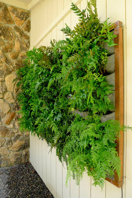 Fern Wall Vertical Garden Installation by PlantsOnWalls.com