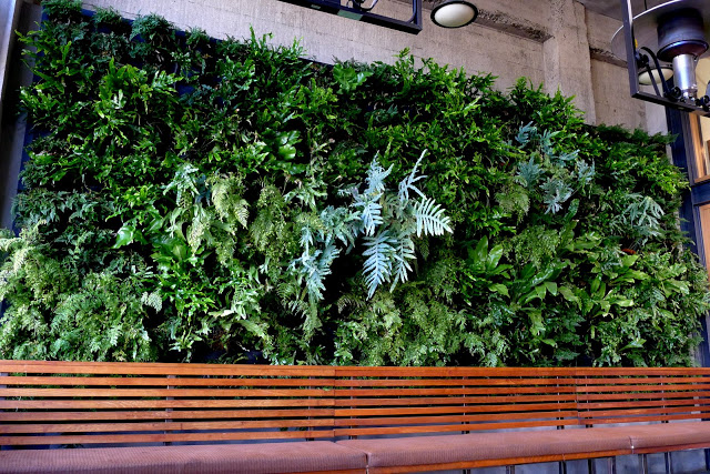 Urban Bistro Burlingame Vertical Garden by Chris Bribach of Plants On Walls using the Florafelt System.