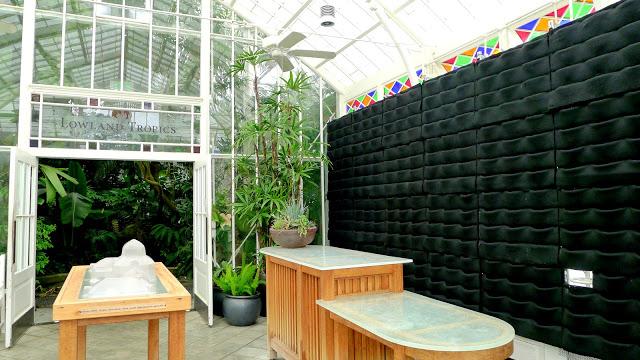 Florafelt Vertical Garden Planters | San Francisco Conservatory of Flowers