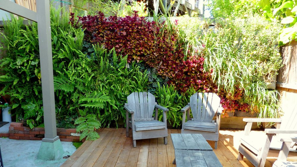 Florafelt garden panels living fence florafelt vertical garden a living wall was chosen as the best way to hide the backside of a neighbors fence the wall is made with seven f24 and seven f12 modular planter panels to workwithnaturefo