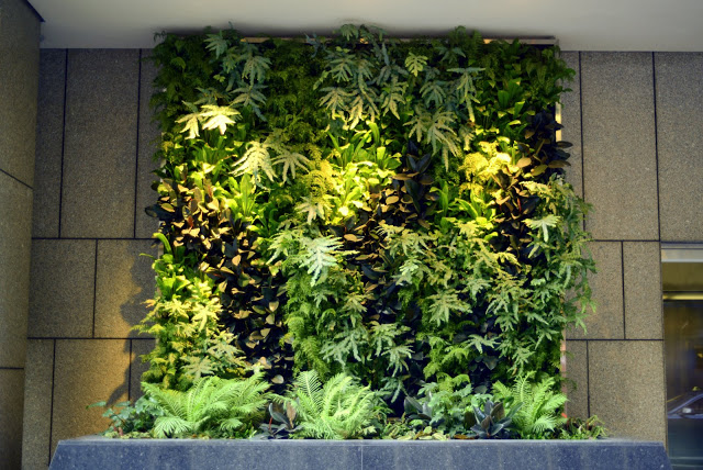 Chris Bribach, Plants On Walls, CBRE San Francisco, Florafelt System