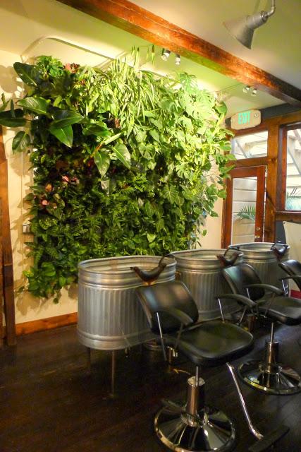 Chris Bribach, Plants On Walls, Population Hair Salon, San Francisco. Florafelt System