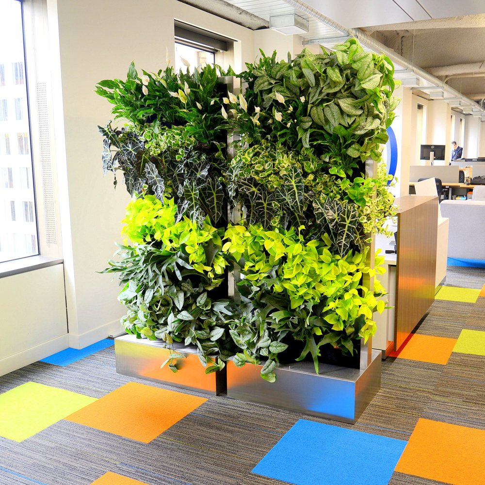 Michael Stephan, Rainforest Plants, Trifacta San Francisco, Florafelt Recirc Systems