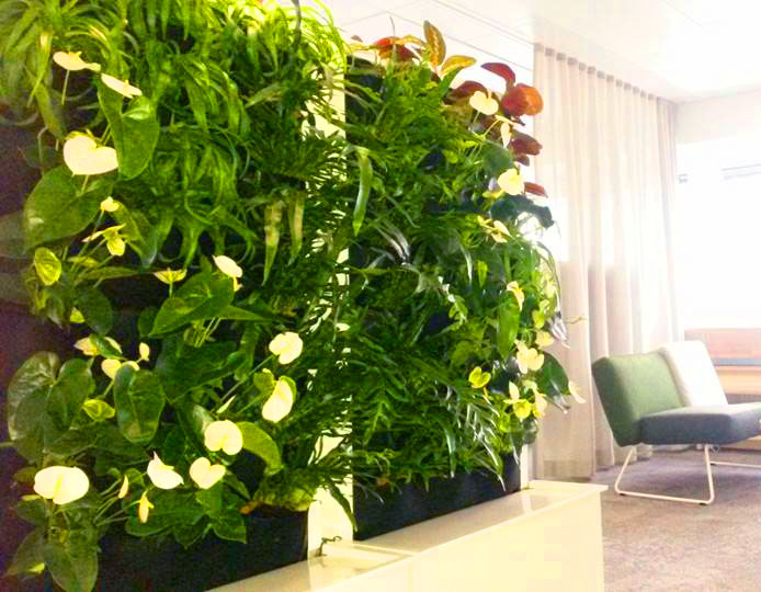 Pasi Lindberg, Kasviseina, Finland. Florafelt Recirc Systems