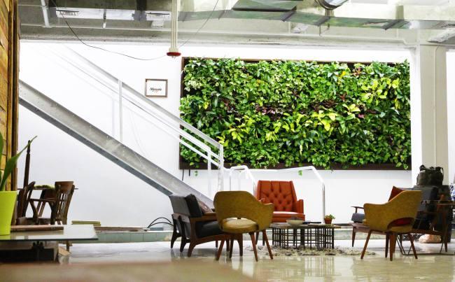 Adrian Lucas, Sassakala, Catapult Entrepreneur Center, Lakeland, Florida. Florafelt System