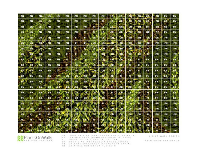 Grid Overlay, Vertical Garden Design by Chris Bribach, Plants On Walls, Florafelt System