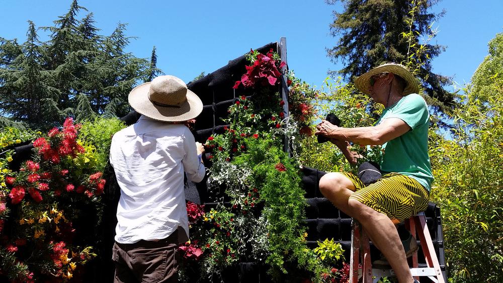 Living Architecture, Living Green Design, Davis Dalbok, Brandon Pruett, Chris Bribach, Florafelt System-002.jpg