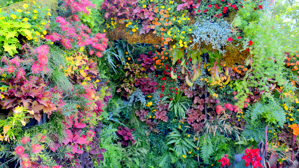 Living Architecture, Living Green Design, Davis Dalbok, Brandon Pruett, Chris Bribach, Florafelt System-003.jpg