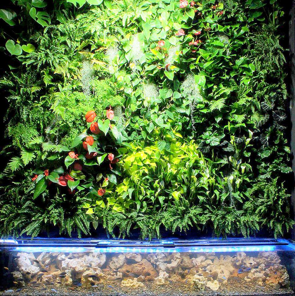 Mas-Was Biotechnology, Barcelona, Florafelt Vertical Garden System