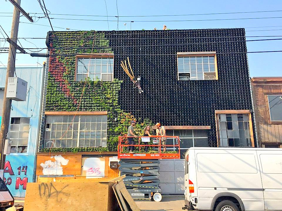 Amanda Goldberg, Brandon Pruett. Planted Design. Near 14th and Folsom St., San Francisco. Florafelt Pro System.