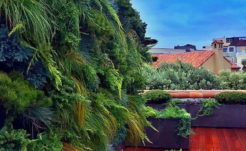 Linsey-Graves-Living-Green-Design-Florafelt-Pro-Vertical-Garden-6
