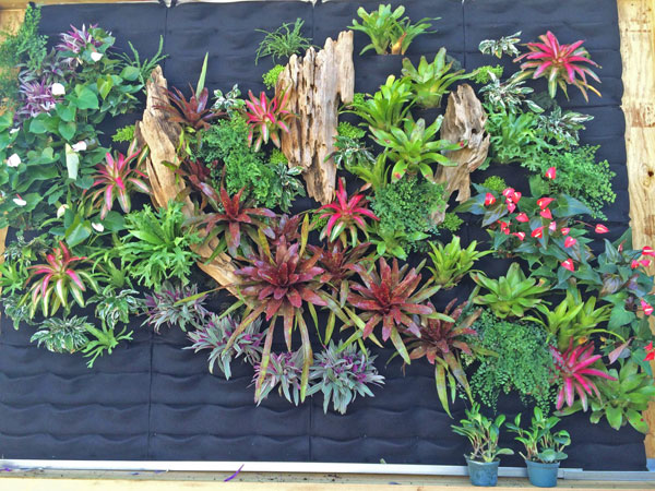 He built one and here they come florafelt vertical garden systems - Vertical gardens miniature oases ...