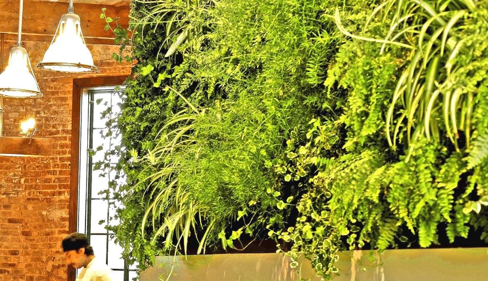 FireDean Shilling. Woodland Landscapes Brooklyn. Colonie Restaurant. Florafelt vertical garden.