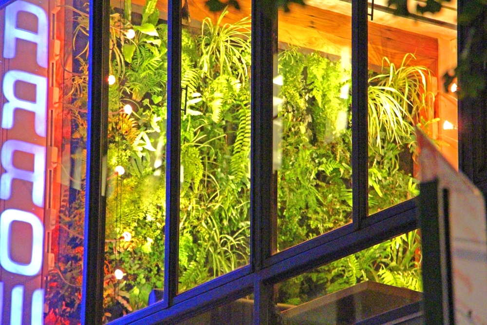 Fire Dean Shilling. Woodland Landscapes Brooklyn. Darrow Street Restaurant. Florafelt vertical garden.