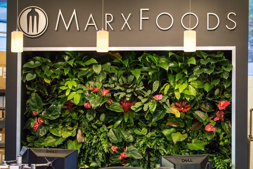 Marks Foods reception desk vertical garden by by Rebecca Sheedy, Floraform Design Seattle, framed Florafelt Compact Vertical Garden Kits.