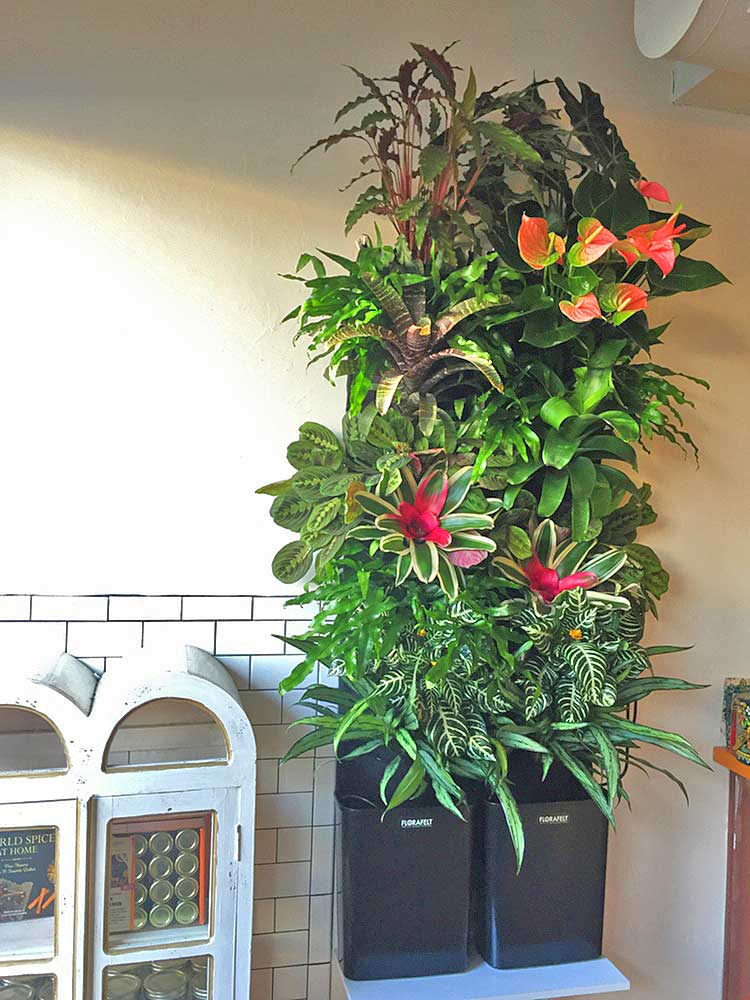 Rebecca Sheedy of Floraform Seattle uses two Florafelt Compact Kits to create a larger install.