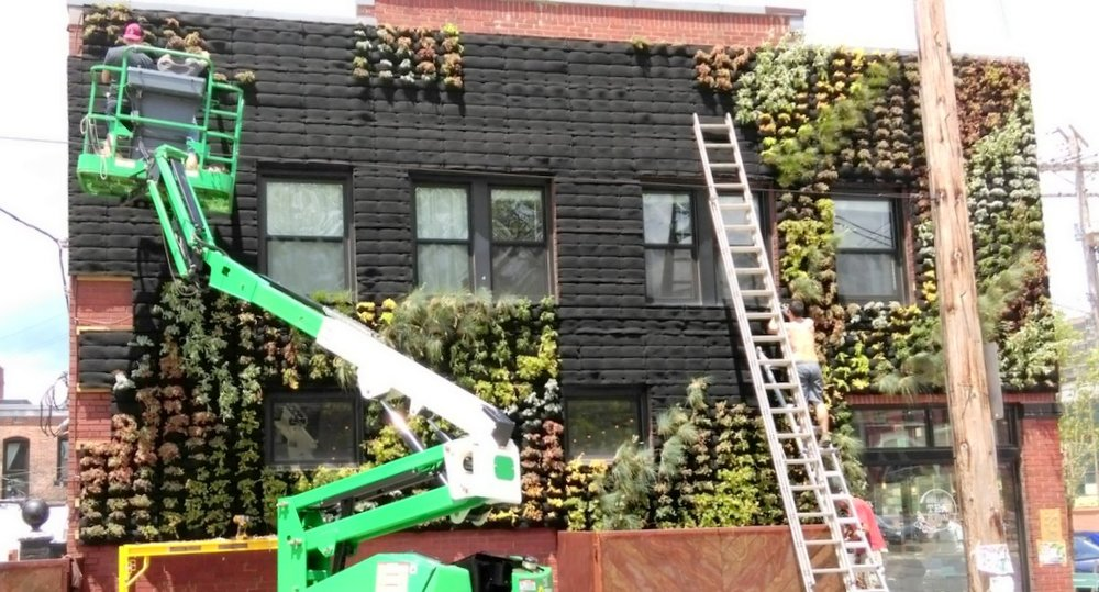 Vertical gardening systems for Wall garden system