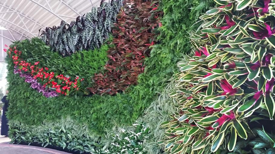 Bayan Palace, Kuwait. Florafelt Vertical Garden by Terra Garden.