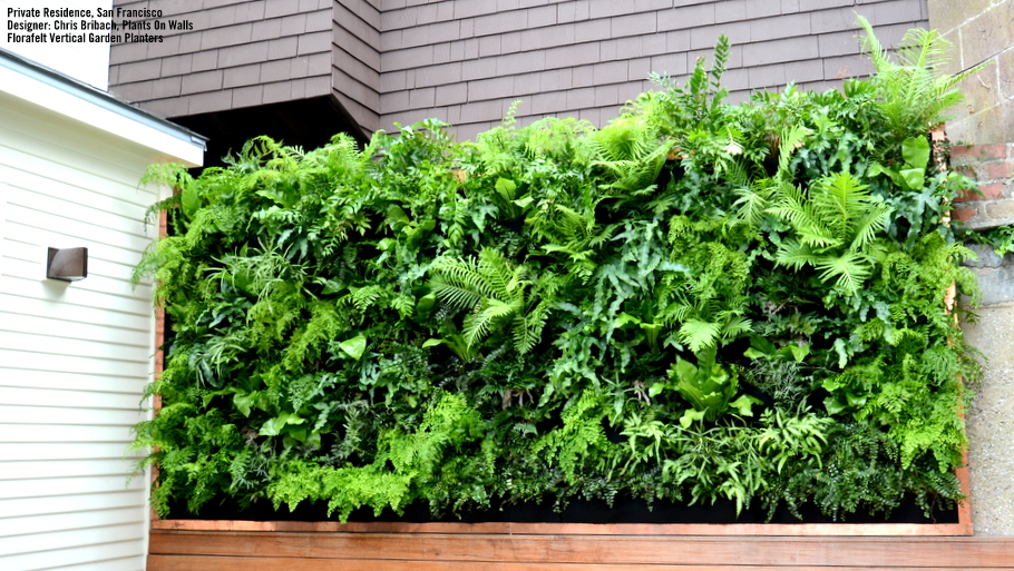 Chris Bribach, Plants On Walls. Private Residence, San Francisco, California. Florafelt Vertical Garden Planters.