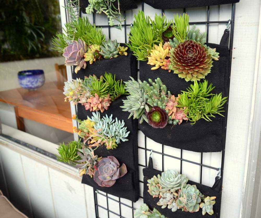 Vertical Garden Pot Easy vertical gardens florafelt vertical garden systems easy succulents florafelt vertical garden planters workwithnaturefo