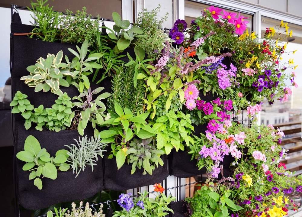 Herbs and Annuals. Florafelt Vertical Garden Planters.