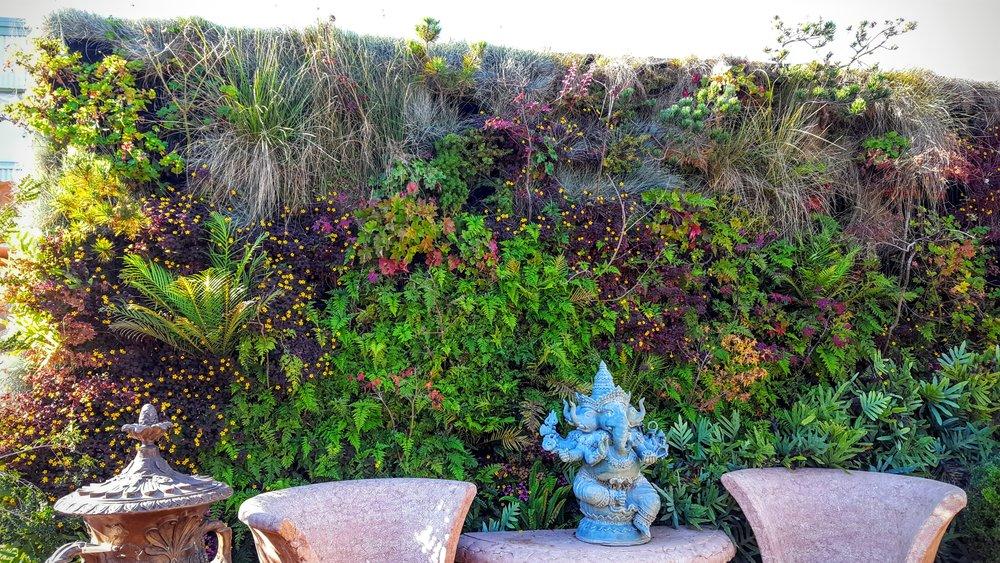 Florafelt-Pro-System-Vertical-Garden-Brandon-Pruett-Living-Walls-Living-Green-Design-20161108_092948.jpg