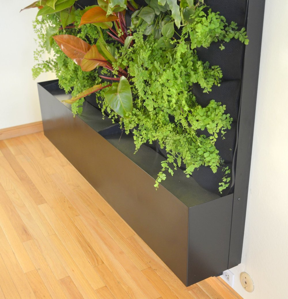 Designer Chris Bribach, Plants On Walls. Custom Recirc Living Wall. Florafelt Vertical Garden Planters.
