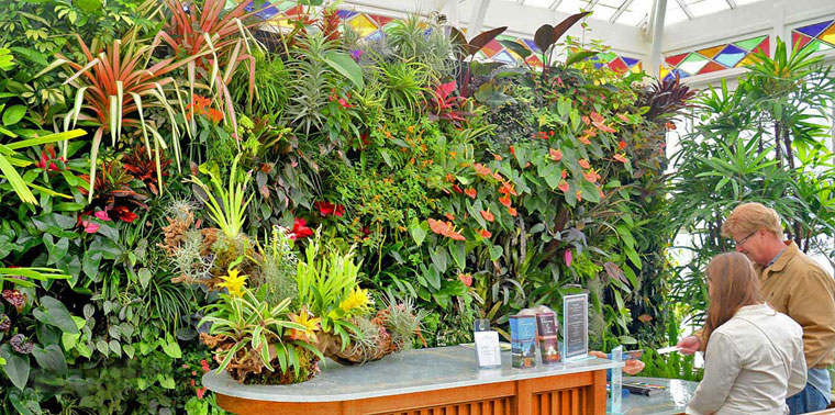 Florafelt Vertical Garden Planters create a living wall at the Conservatory of Flowers in San Francisco.
